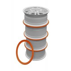 Ratlankių sandėliavimo žiedas R18