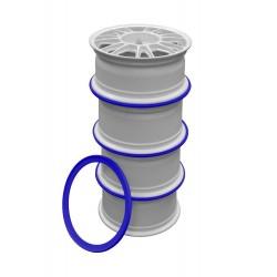 Ratlankių sandėliavimo žiedas R17